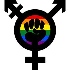 trans-feminism-rainbow_240x240