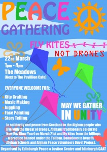 Fly Kites - Not Drones -Flyer
